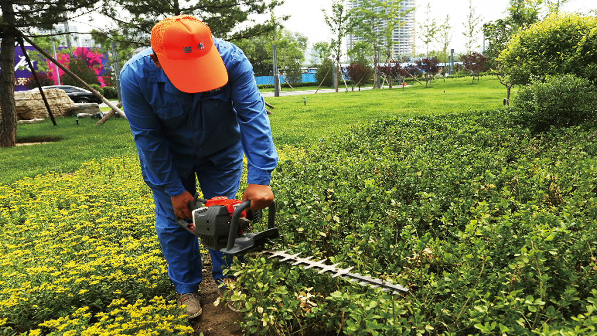 藍泰集團園林綠化工程山西有限公司